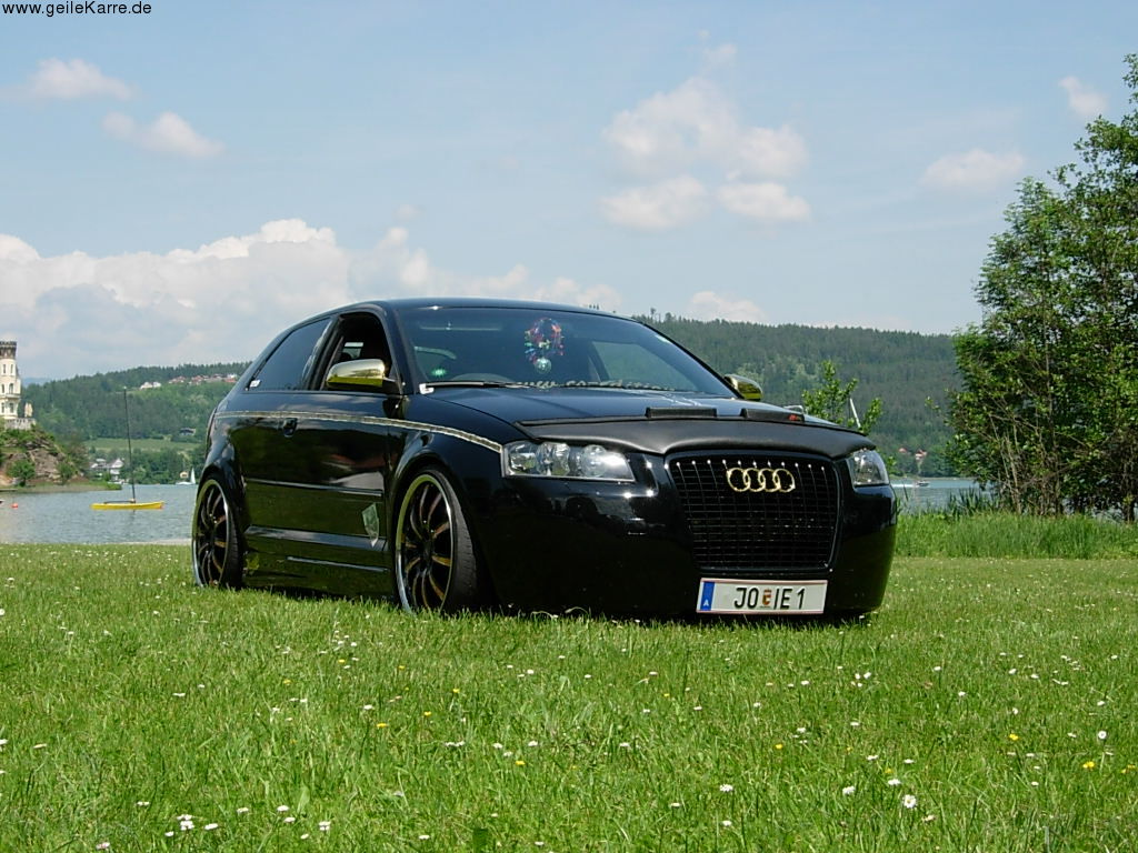 2004 Audi A3 8p Pictures Information And Specs Auto