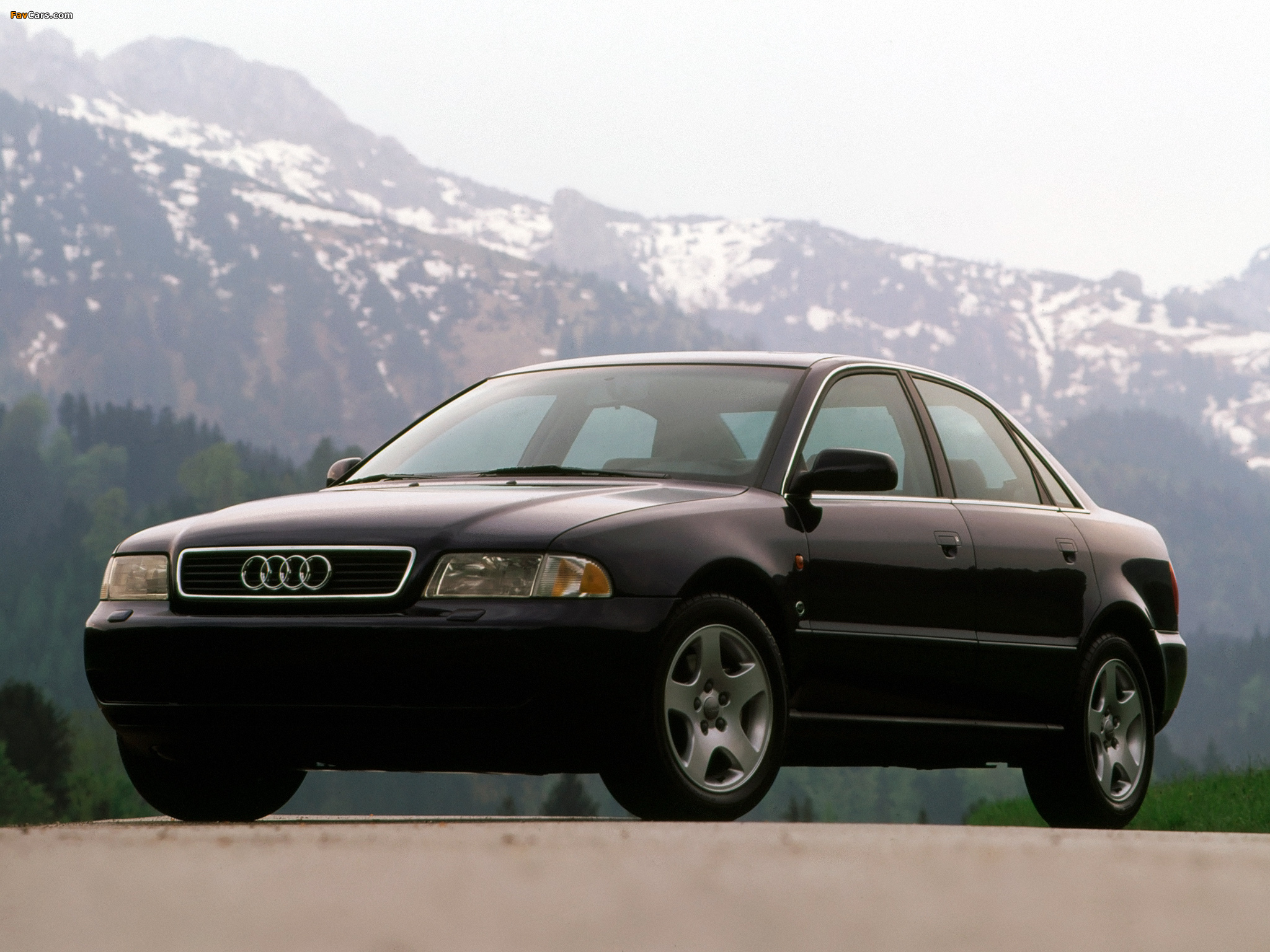 1995 Audi A4 8d B5 Pictures Information And Specs