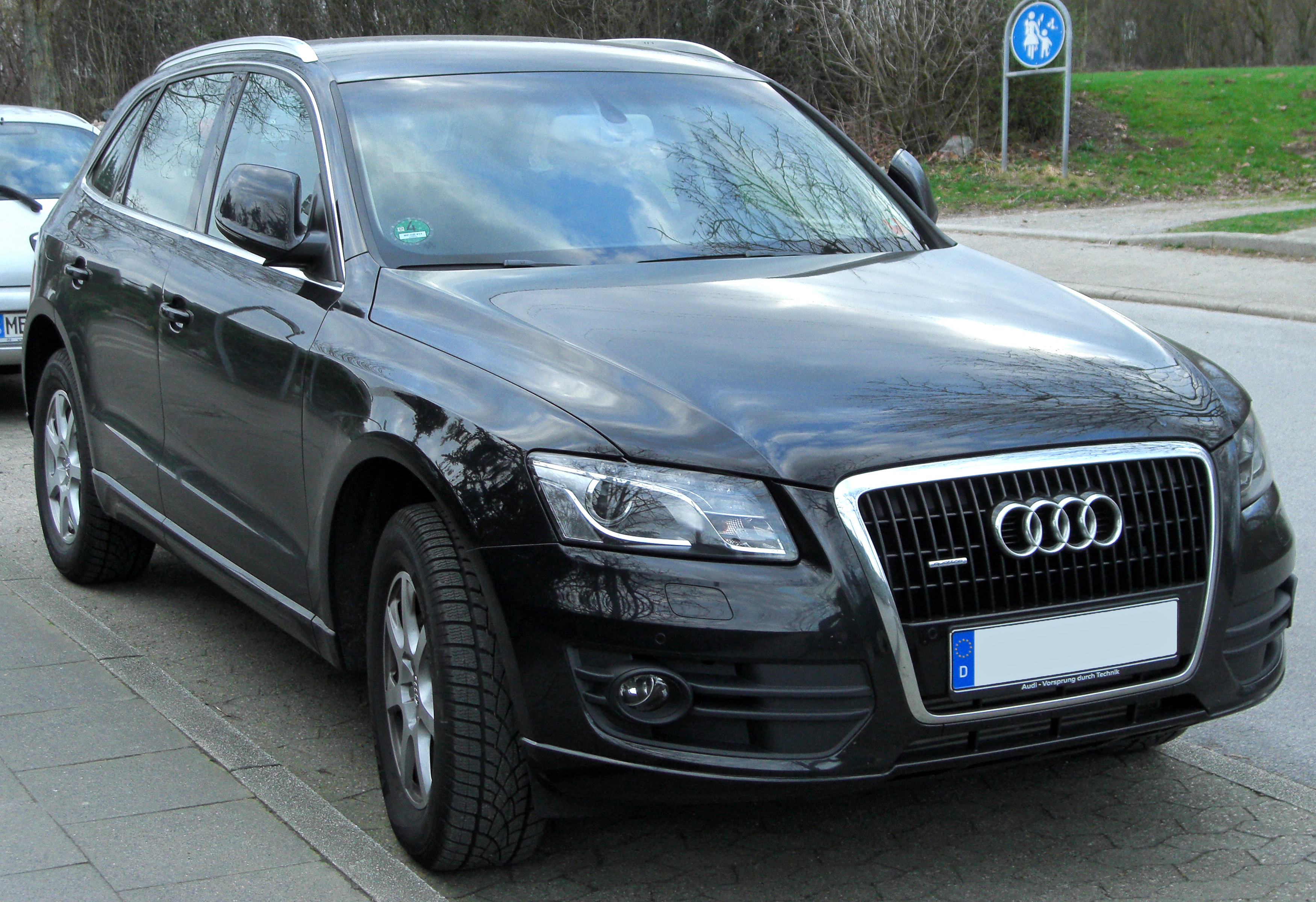 2010 audi q5 pictures information and specs auto. Black Bedroom Furniture Sets. Home Design Ideas