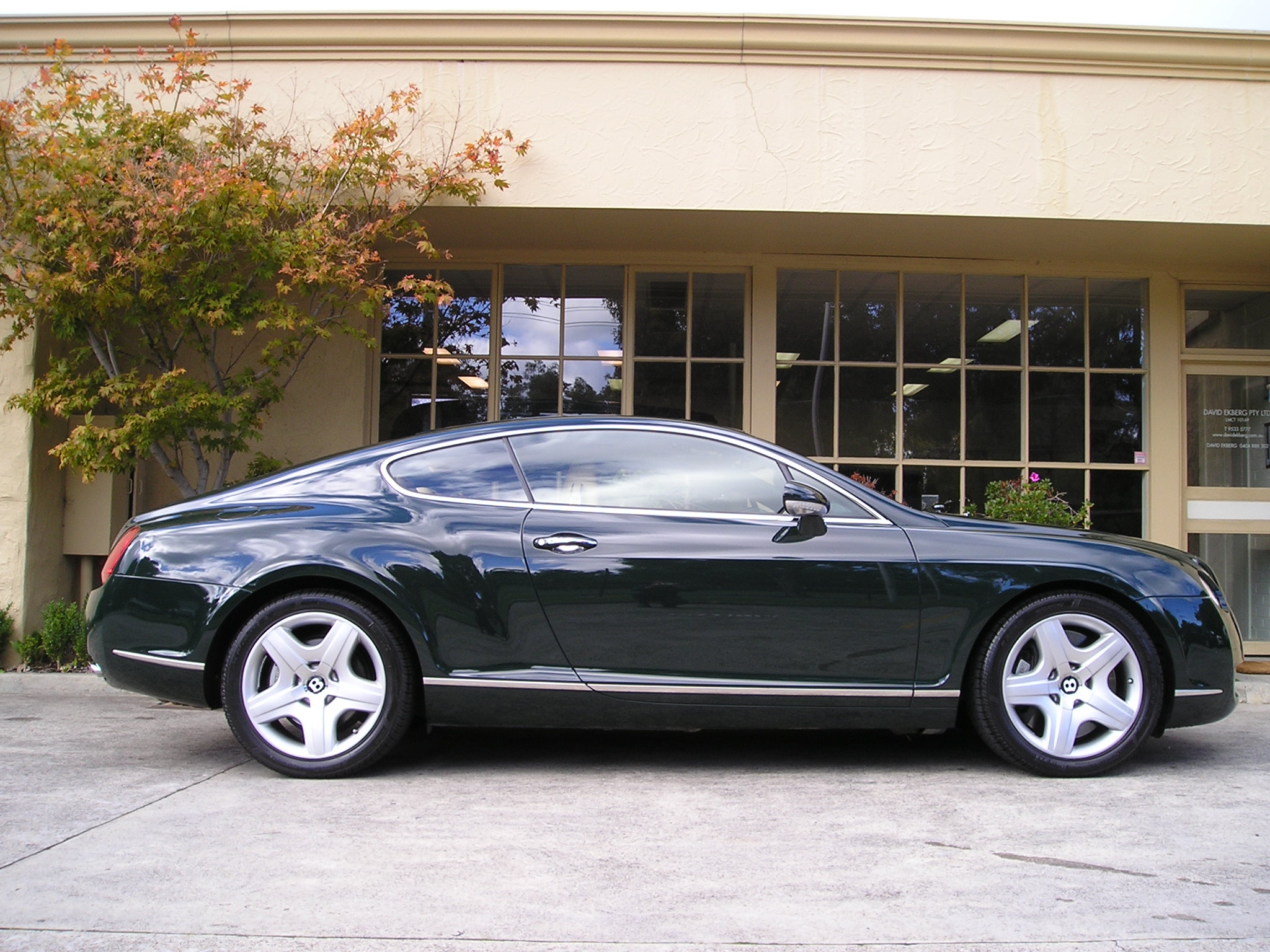 2004 bentley continental gt pictures information and specs auto. Black Bedroom Furniture Sets. Home Design Ideas