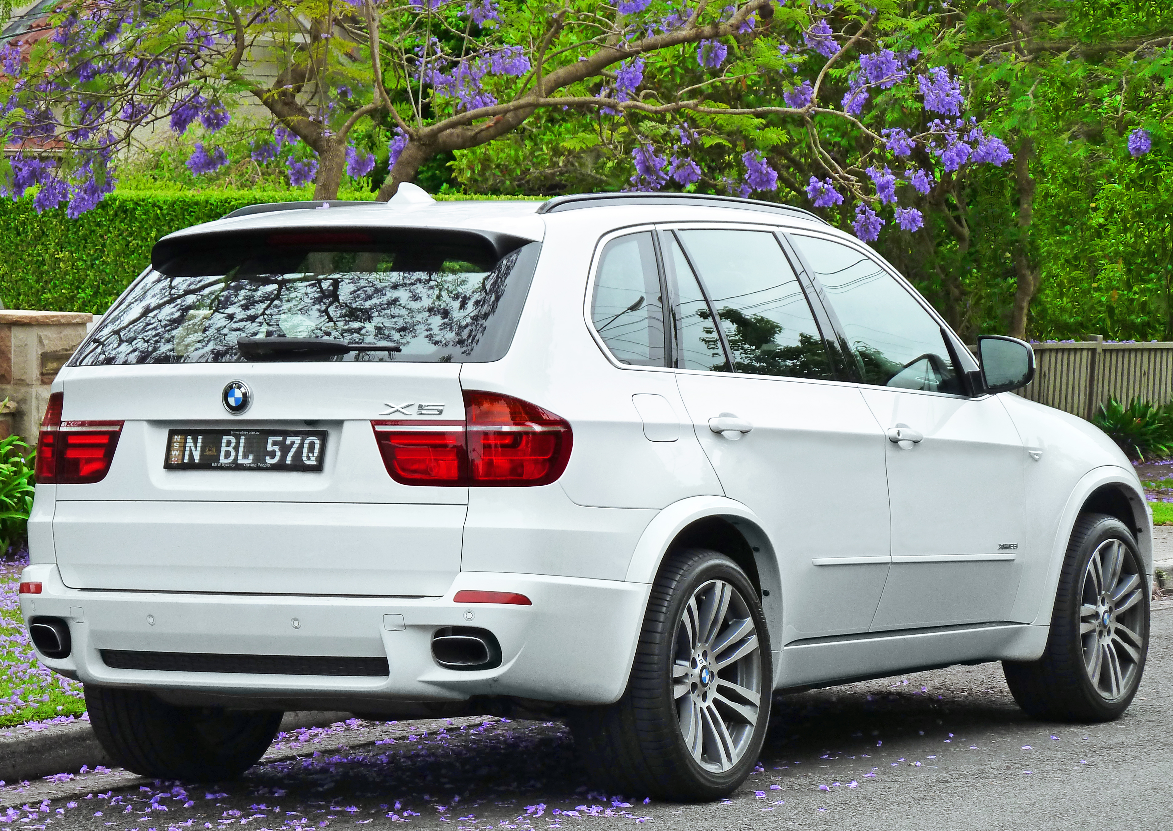 2011 bmw x5 m e70 pictures information and specs auto. Black Bedroom Furniture Sets. Home Design Ideas