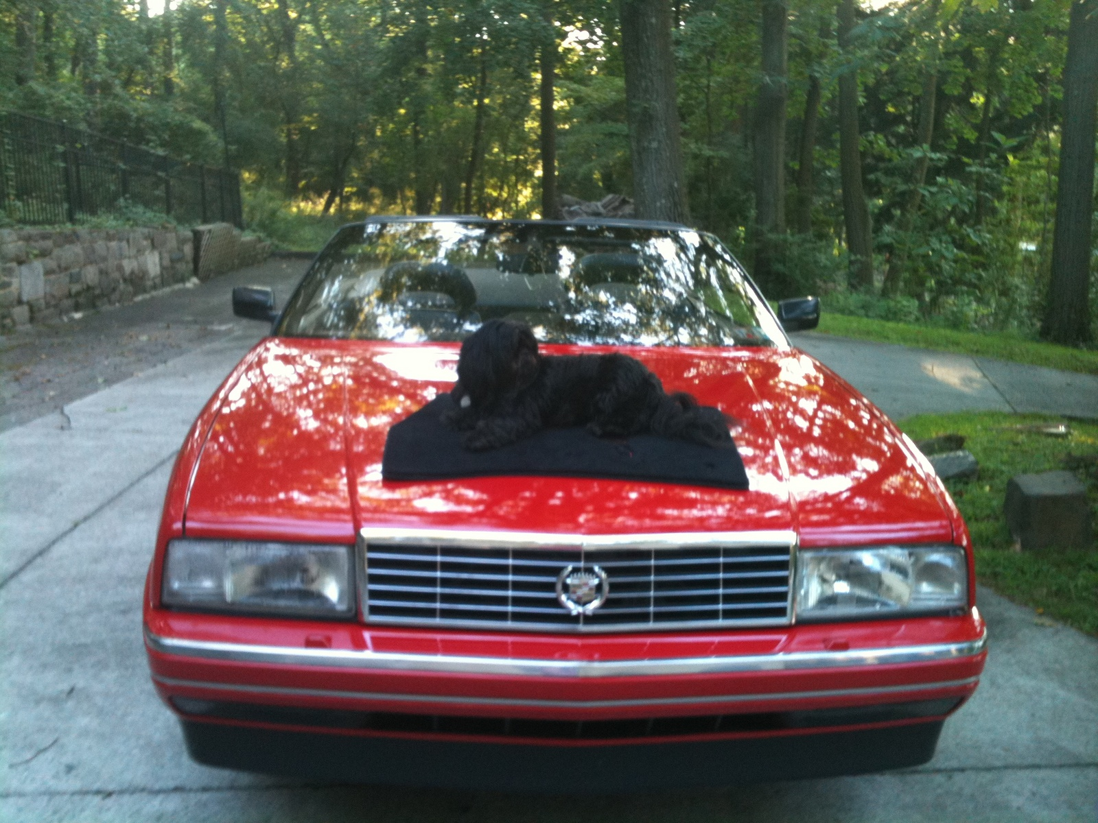 1992 Cadillac Allante   pictures, information and specs - Auto
