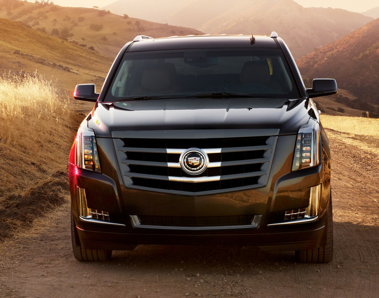 2016 cadillac escalade ext pictures information and specs auto. Black Bedroom Furniture Sets. Home Design Ideas