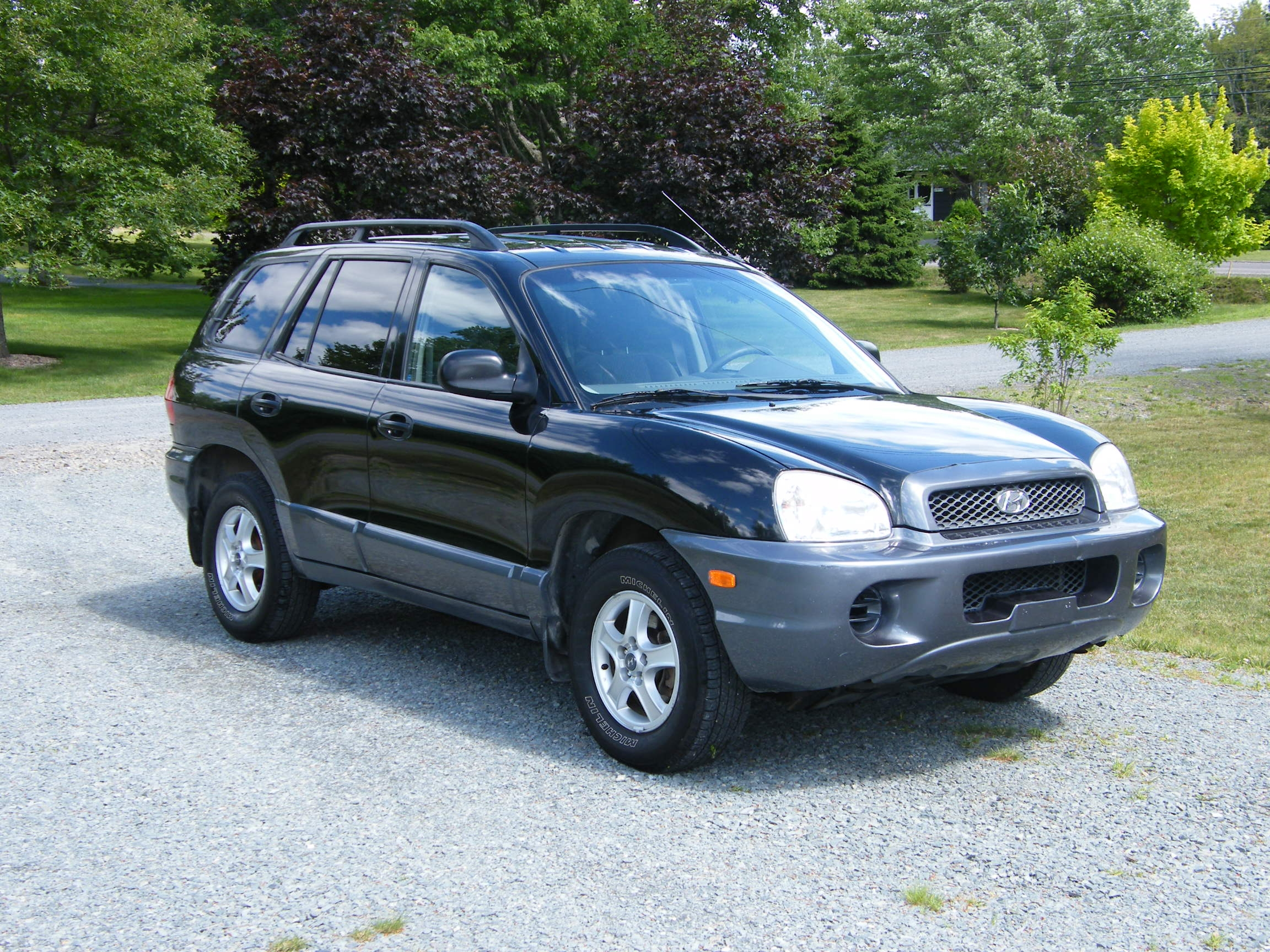 2003 hyundai santa fe pictures information and specs