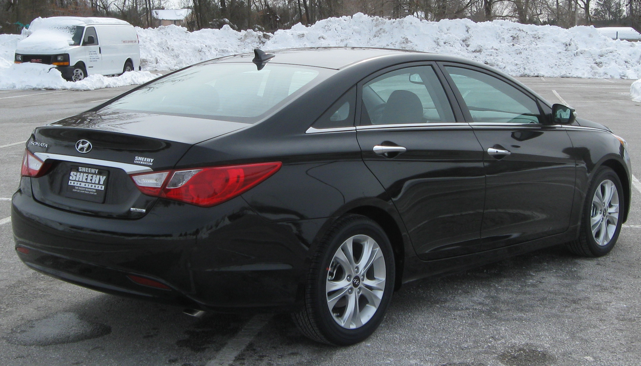 2010 hyundai sonata vii pictures information and specs. Black Bedroom Furniture Sets. Home Design Ideas