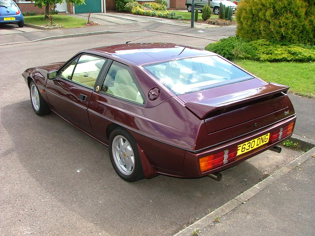 Lotus Excel Pictures Information And Specs Auto