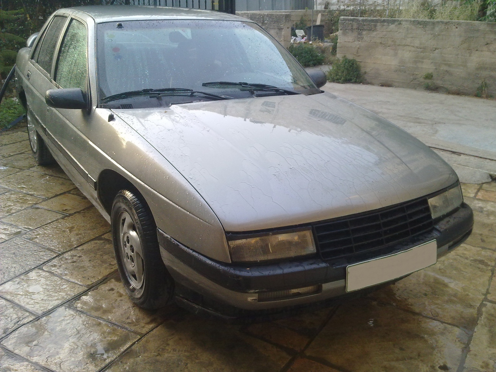 1993 Chevrolet Corsica Pictures Information And Specs Auto Database Com