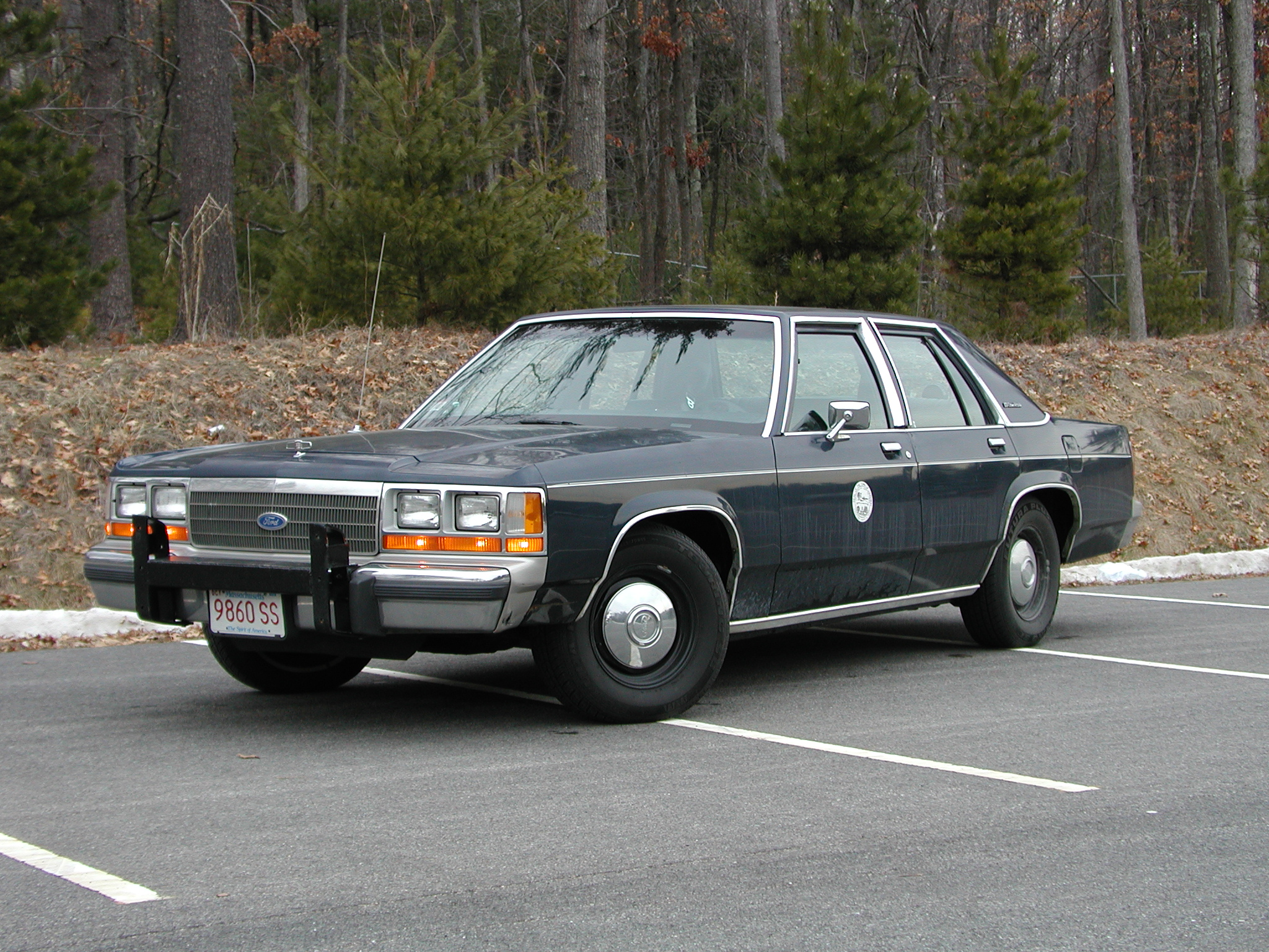 ford crown victoria pics #14