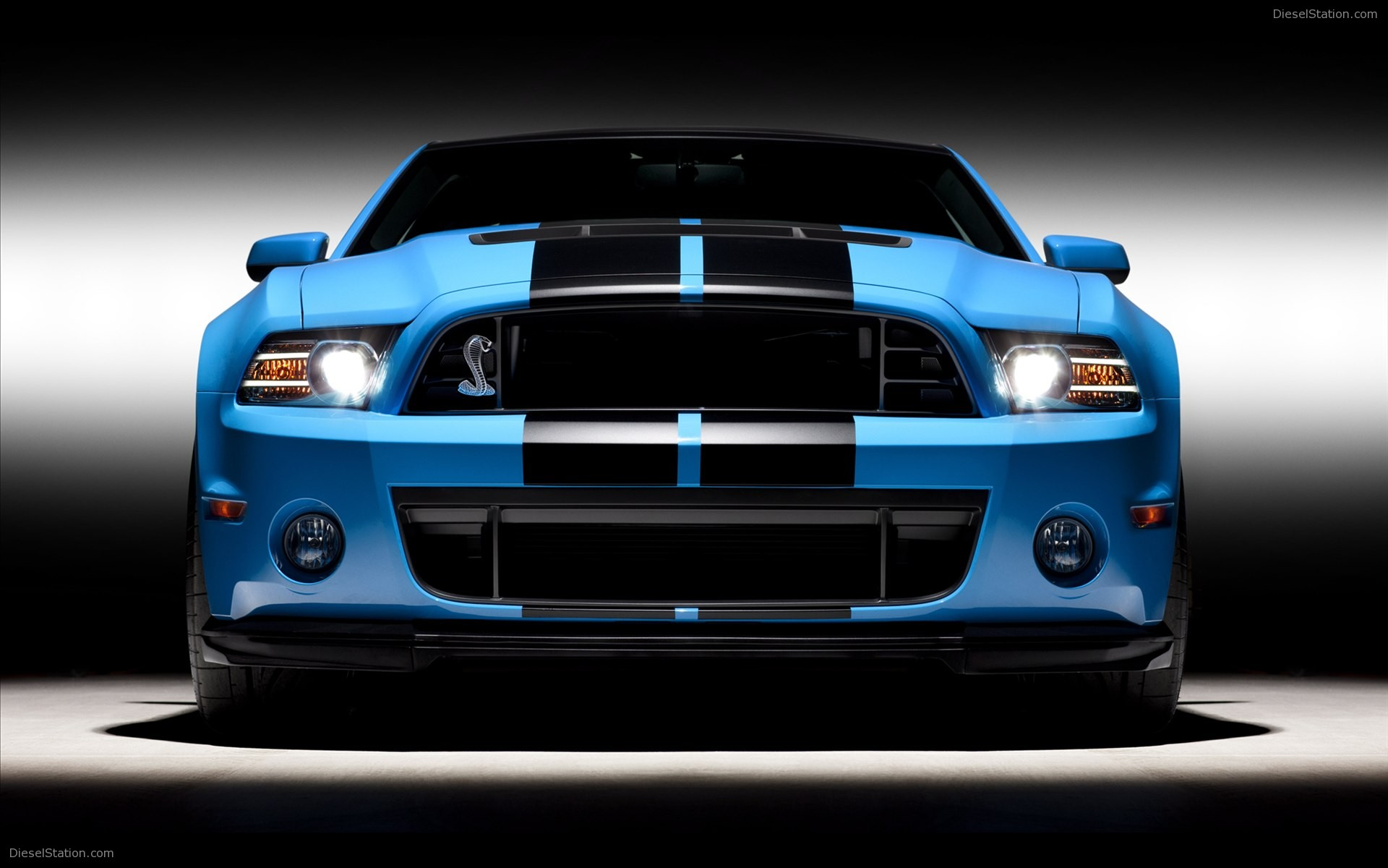 ford shelby images #15