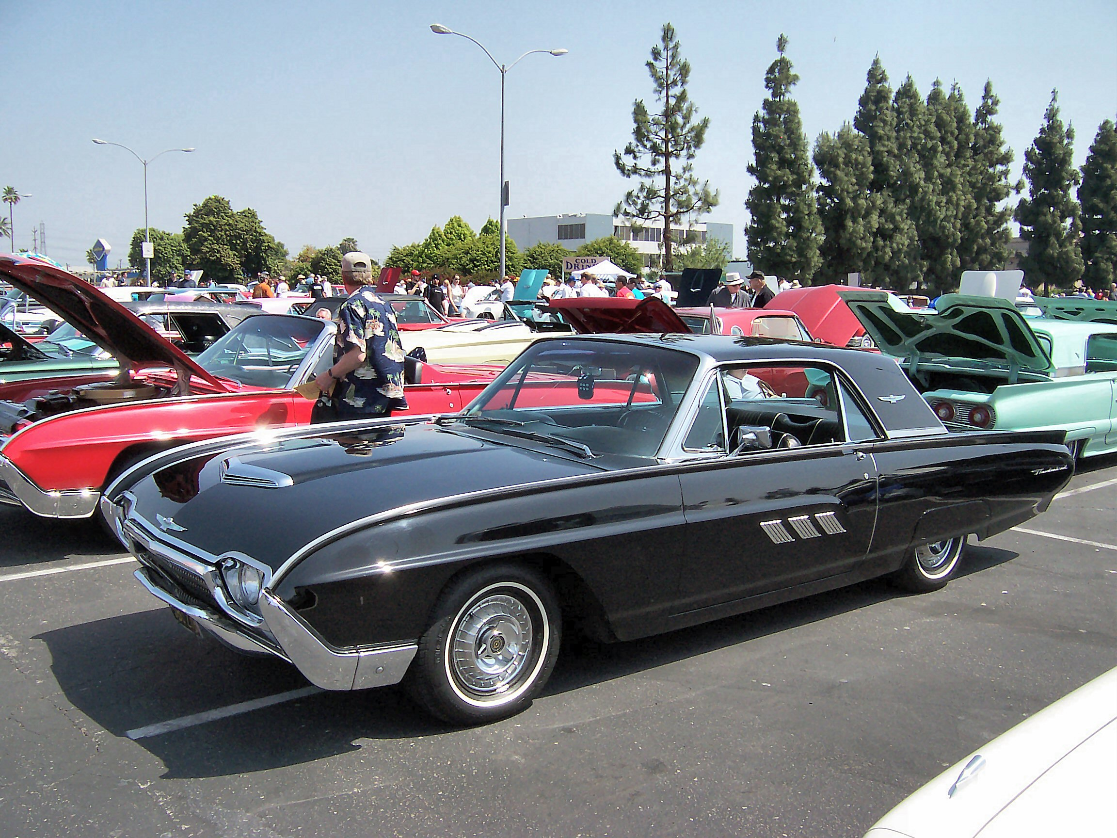 ford thunderbird images #5