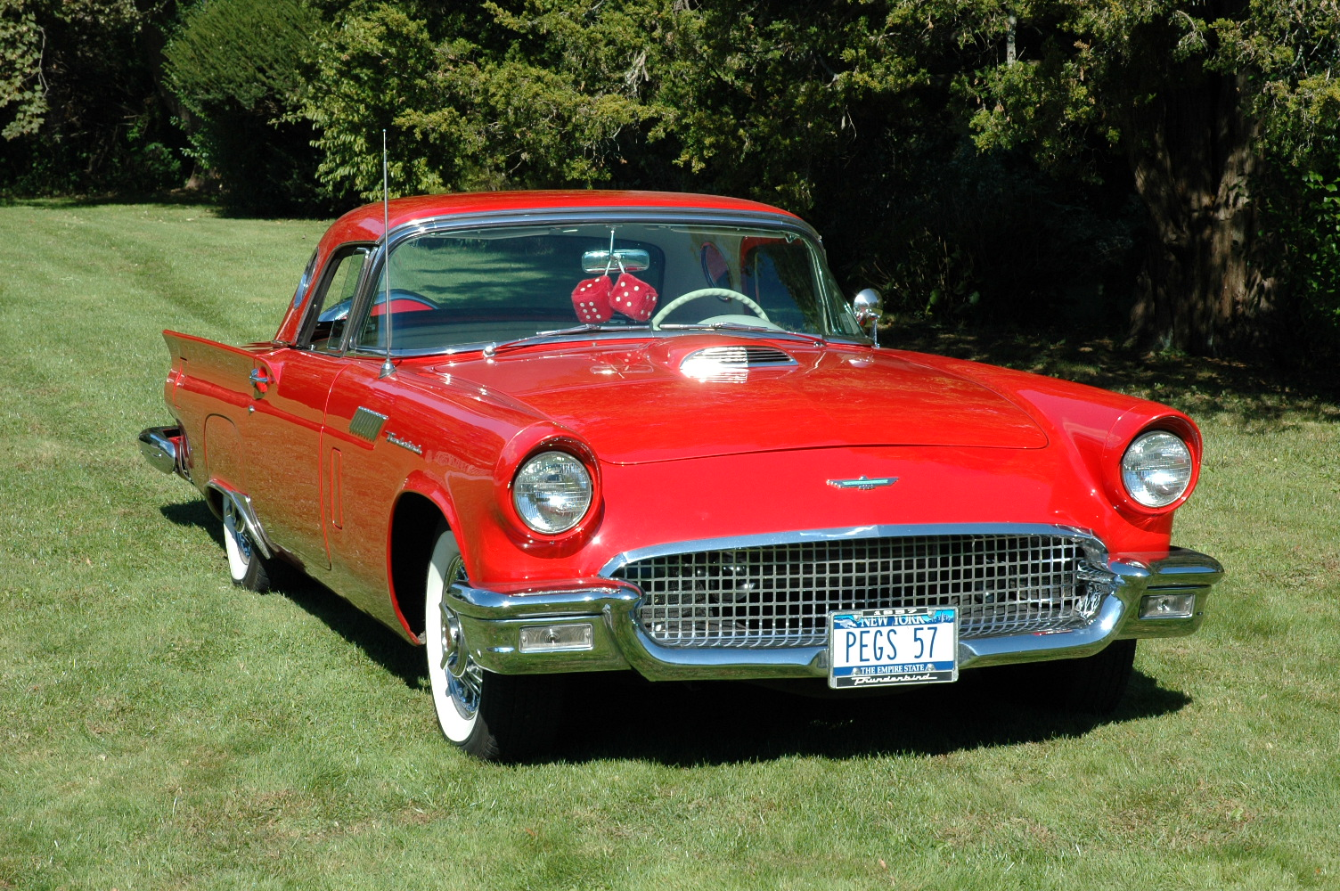 ford thunderbird images #13