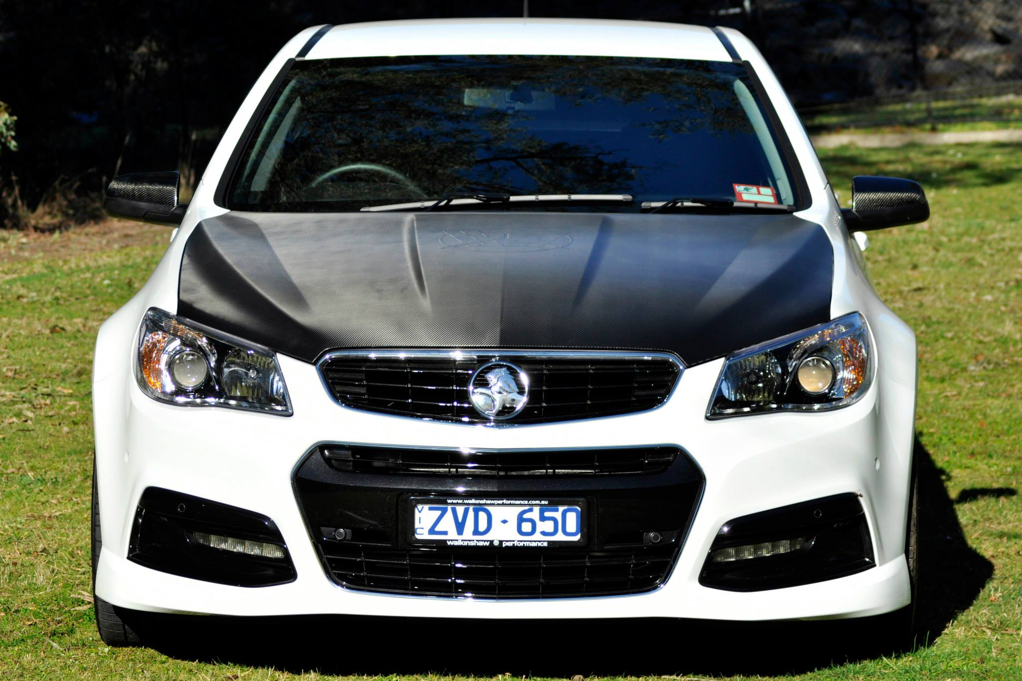 holden commodore pics