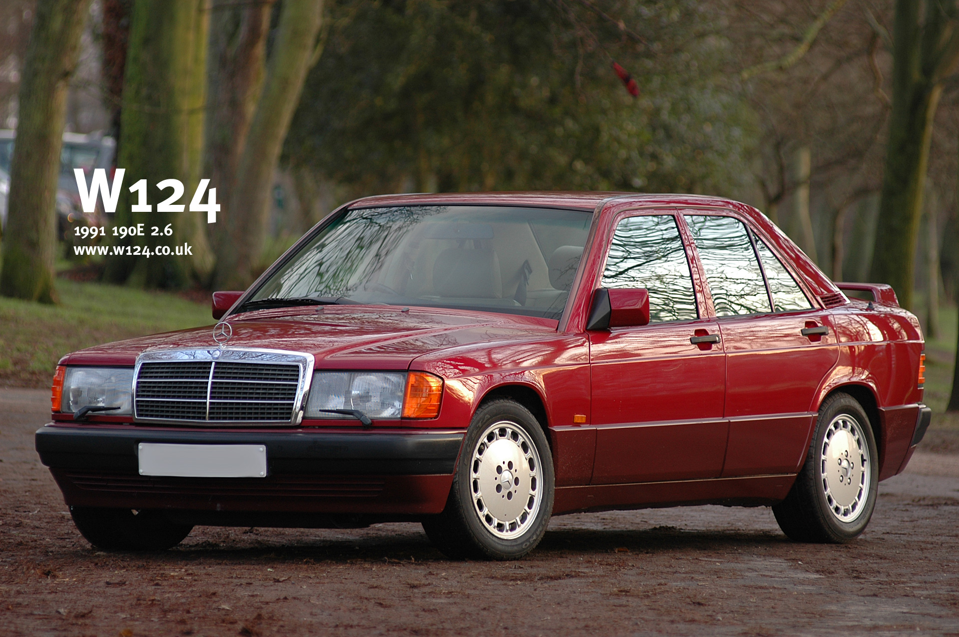 mercedes w201 (190) pictures #1