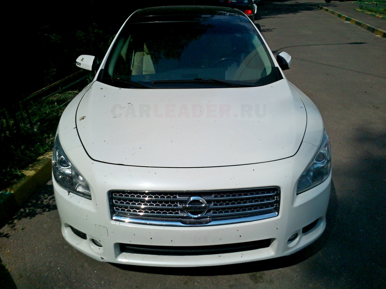 2012 nissan maxima vii pictures information and specs. Black Bedroom Furniture Sets. Home Design Ideas