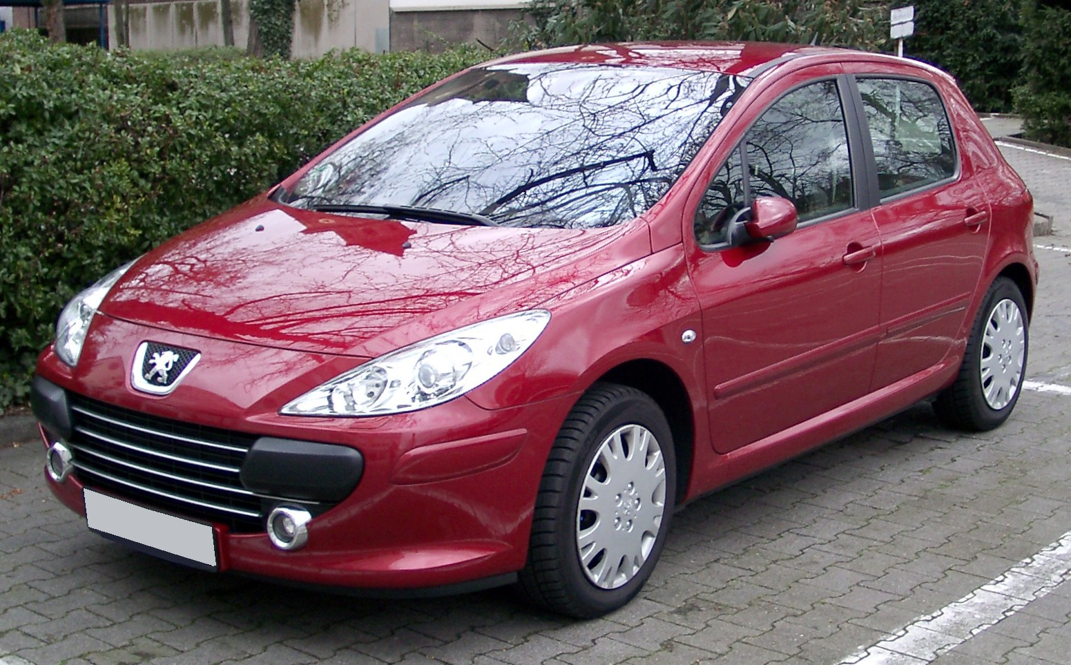 peugeot 307 pictures #14
