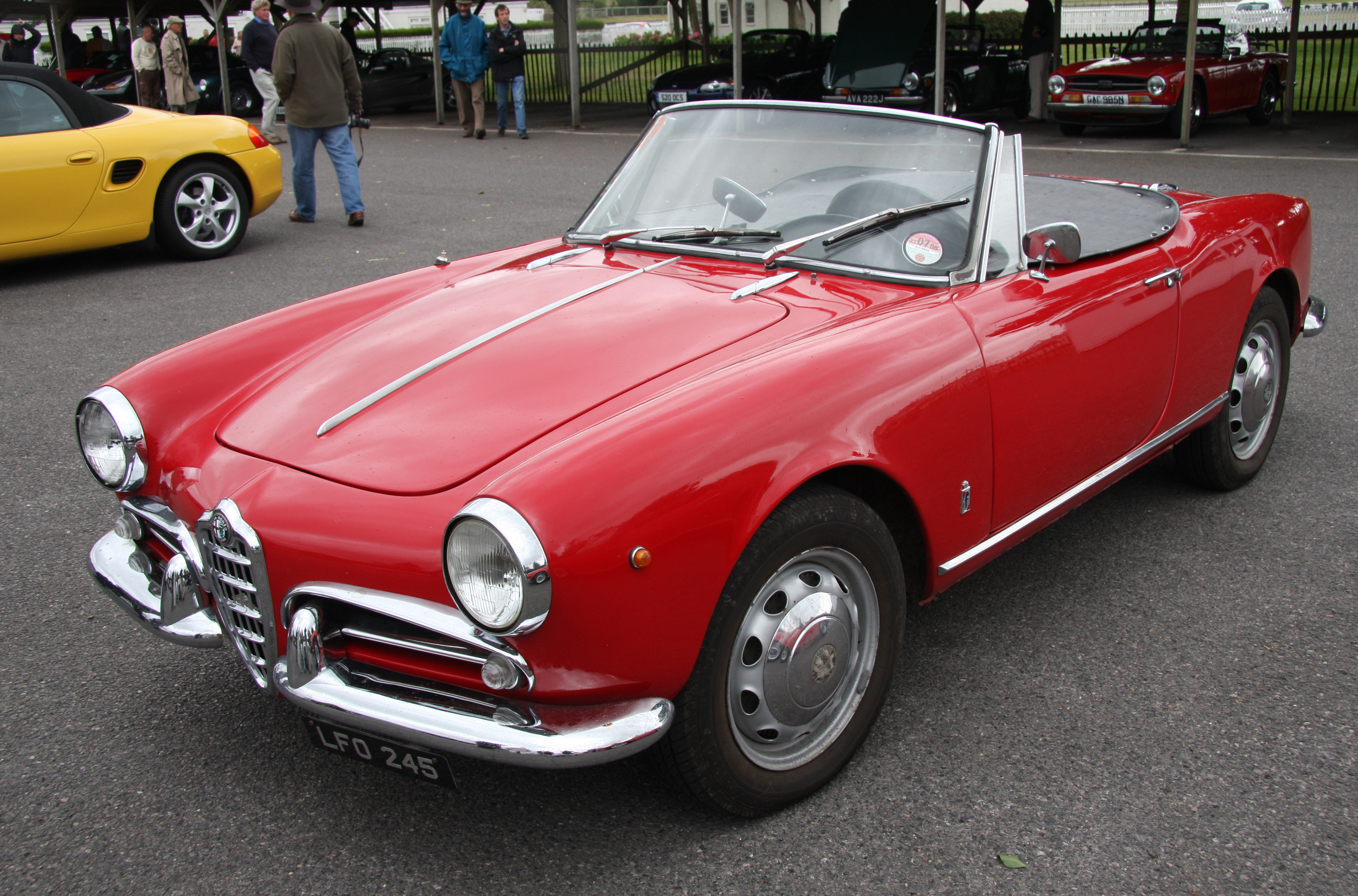 Pictures of alfa romeo #1