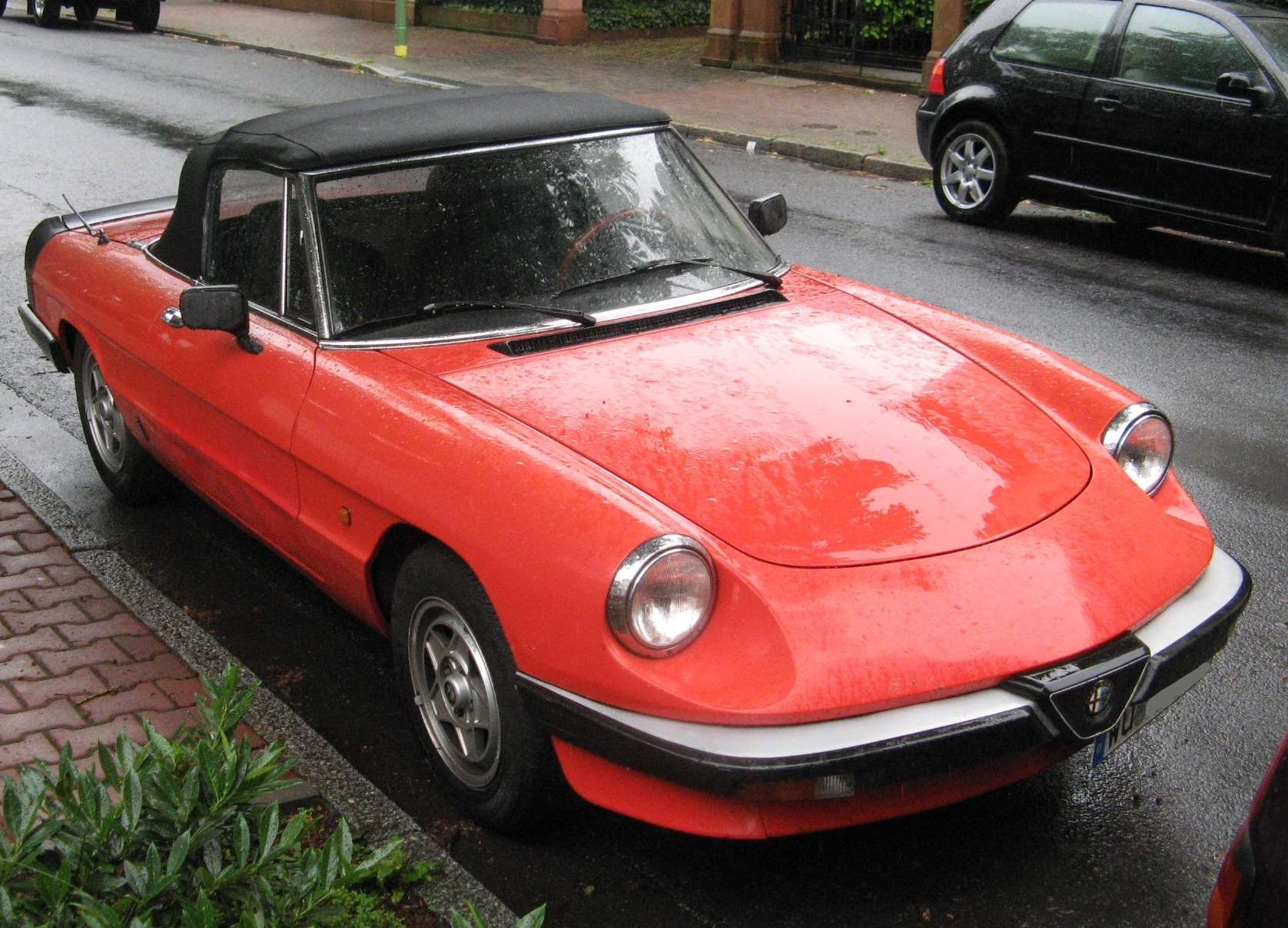 Pictures of alfa romeo spider #7