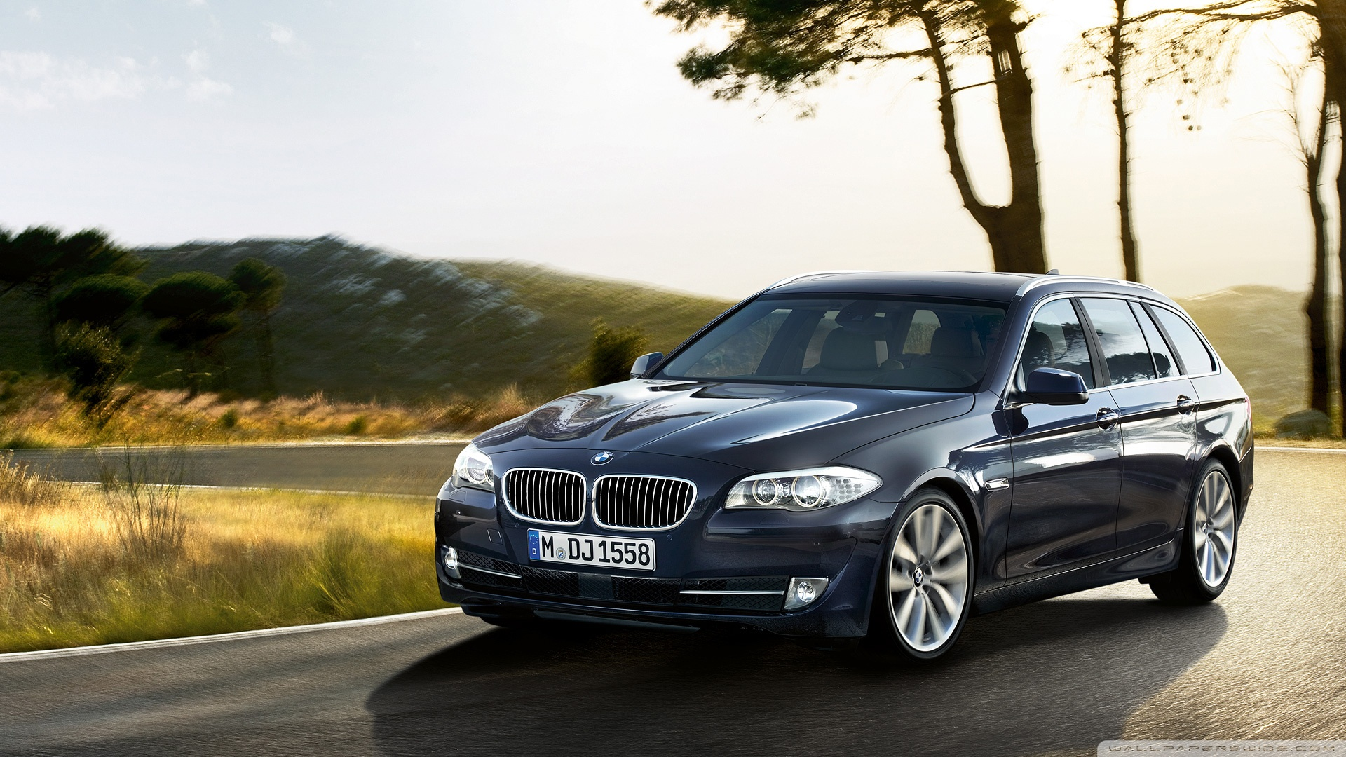 2013 bmw 5er touring f11 pictures information and specs auto. Black Bedroom Furniture Sets. Home Design Ideas