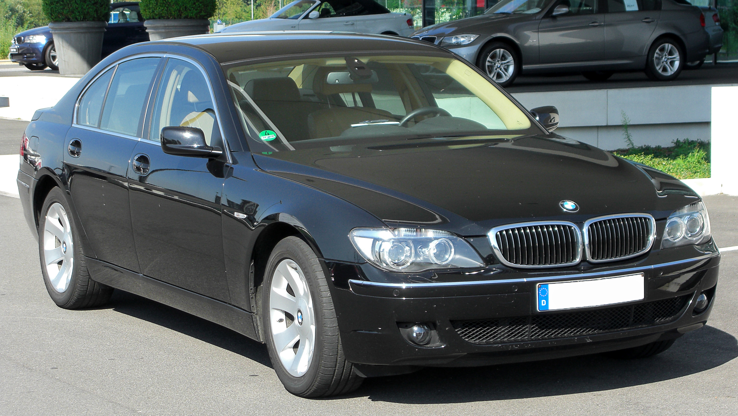 Pictures of bmw 7er (e65/e66 l) 2003 #6