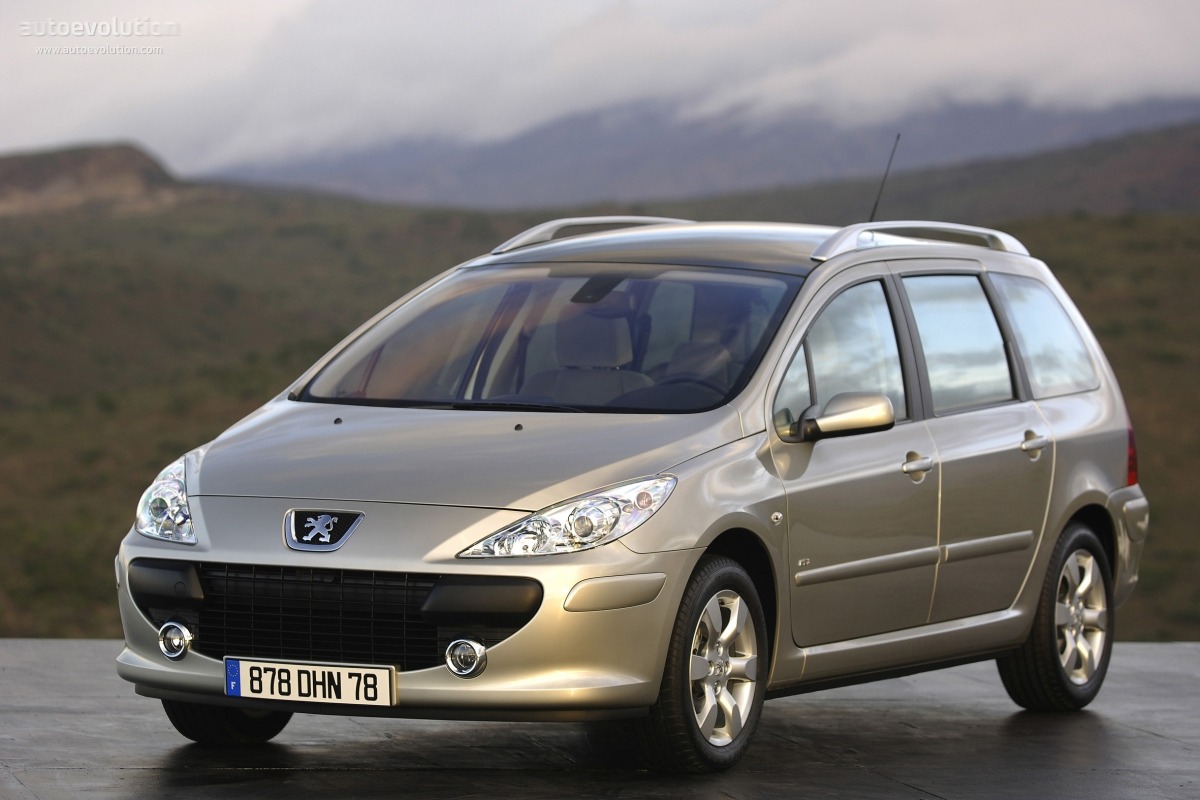 Pictures of peugeot 307 #15