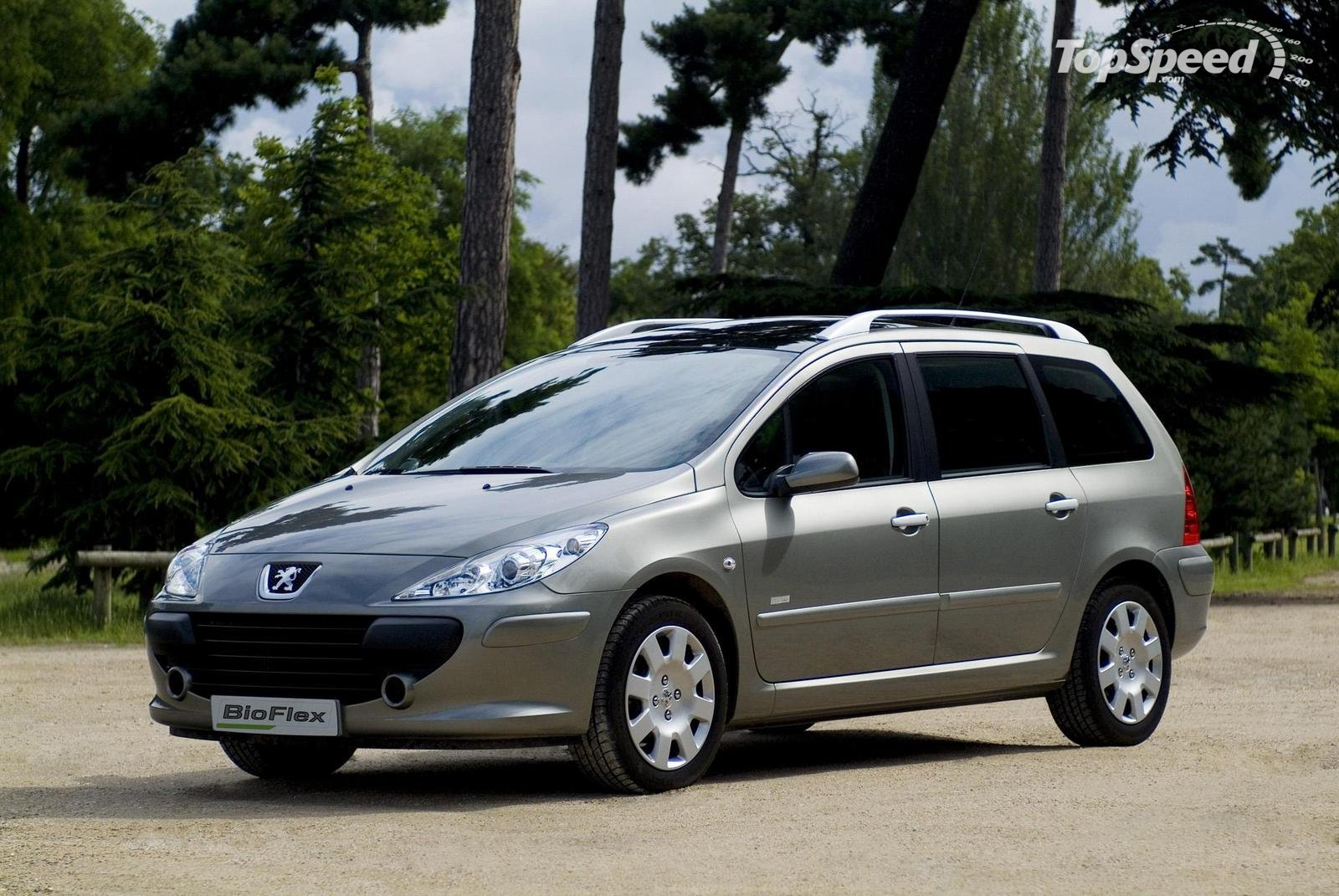 Pictures of peugeot 307 station wagon 2014 #2