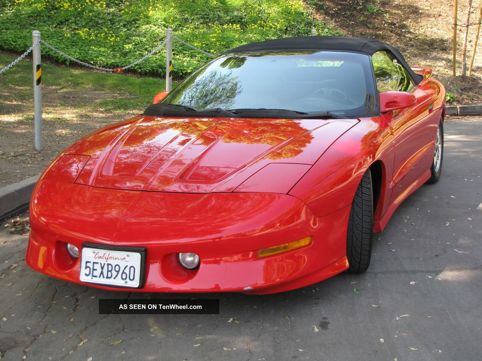 1996 pontiac firebird cabrio pictures information and. Black Bedroom Furniture Sets. Home Design Ideas